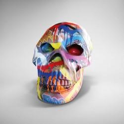"""Crâne tagué par """" Gus Art"""""""